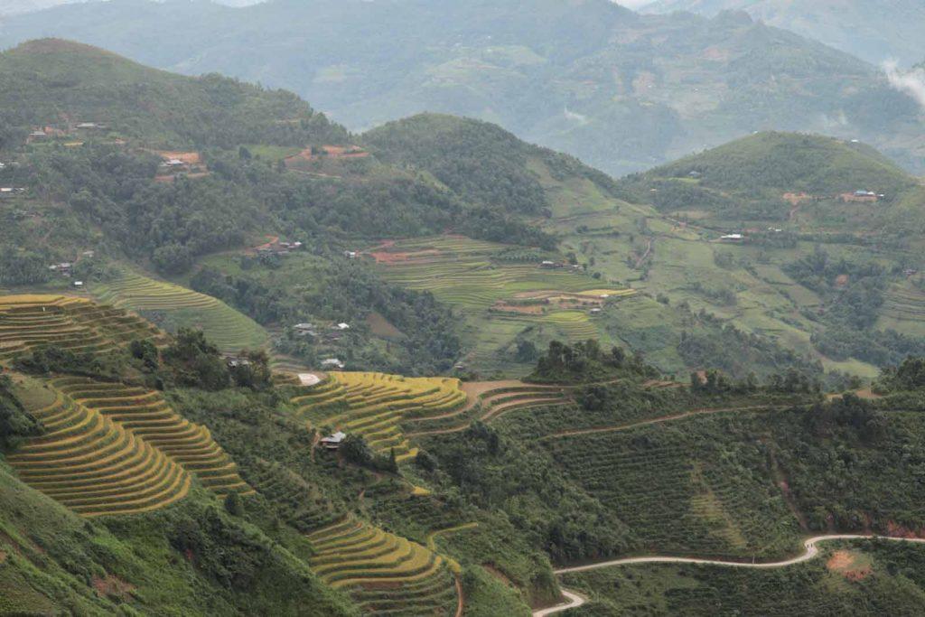 activities ha giang loop rice terraces