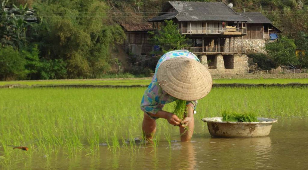 5 reasons to add Ba Be Lake to your itinerary in Vietnam - ethnic minority groups